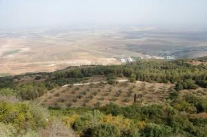 Israel - gezicht vanaf Karmel op vlakte v Jizreel